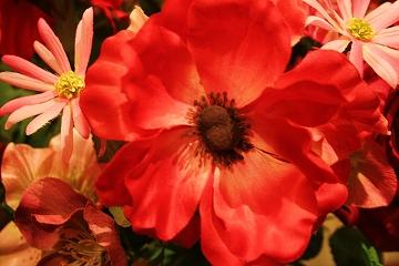 101211花